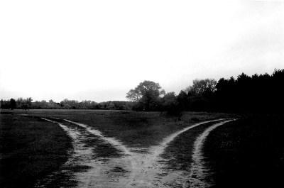 two_paths_b_w_.jpg